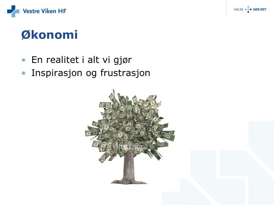 Økonomi En realitet i alt vi gjør Inspirasjon og frustrasjon