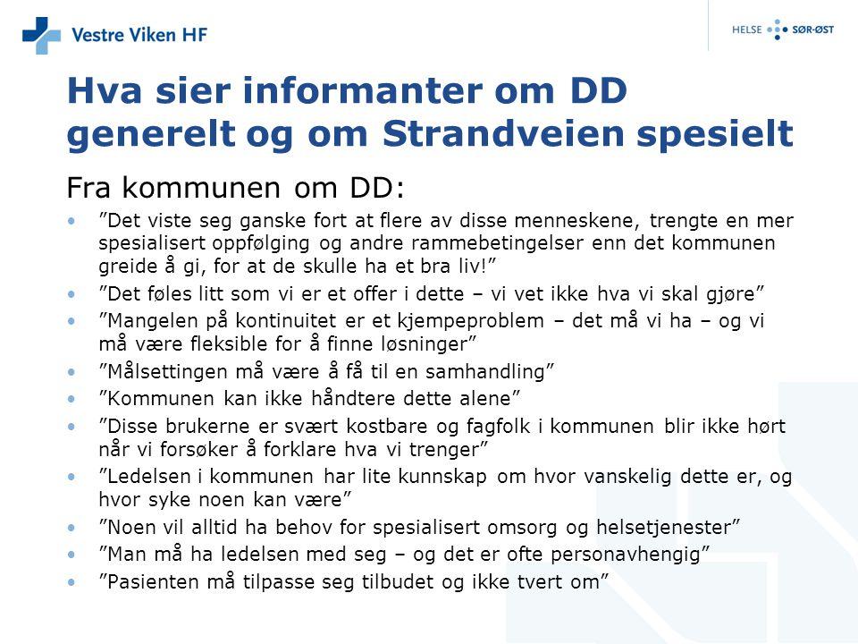 Hva sier informanter om DD generelt og om Strandveien spesielt