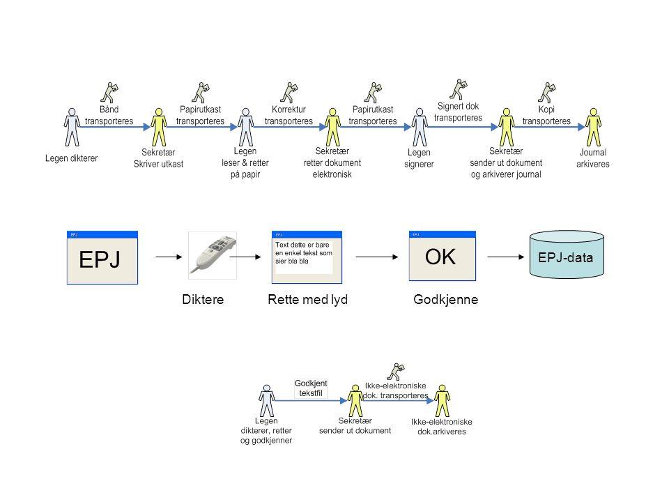 EPJ-data Diktere Rette med lyd Godkjenne