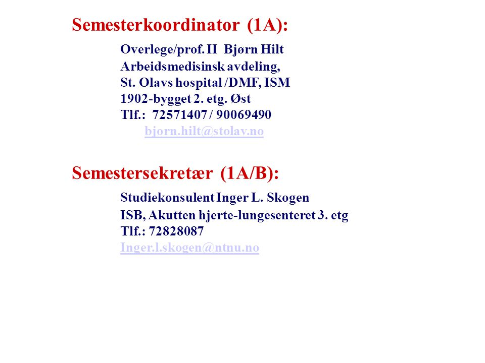 Semesterkoordinator (1A): Overlege/prof. II Bjørn Hilt