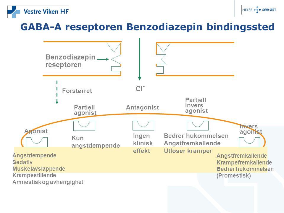 GABA-A reseptoren Benzodiazepin bindingssted