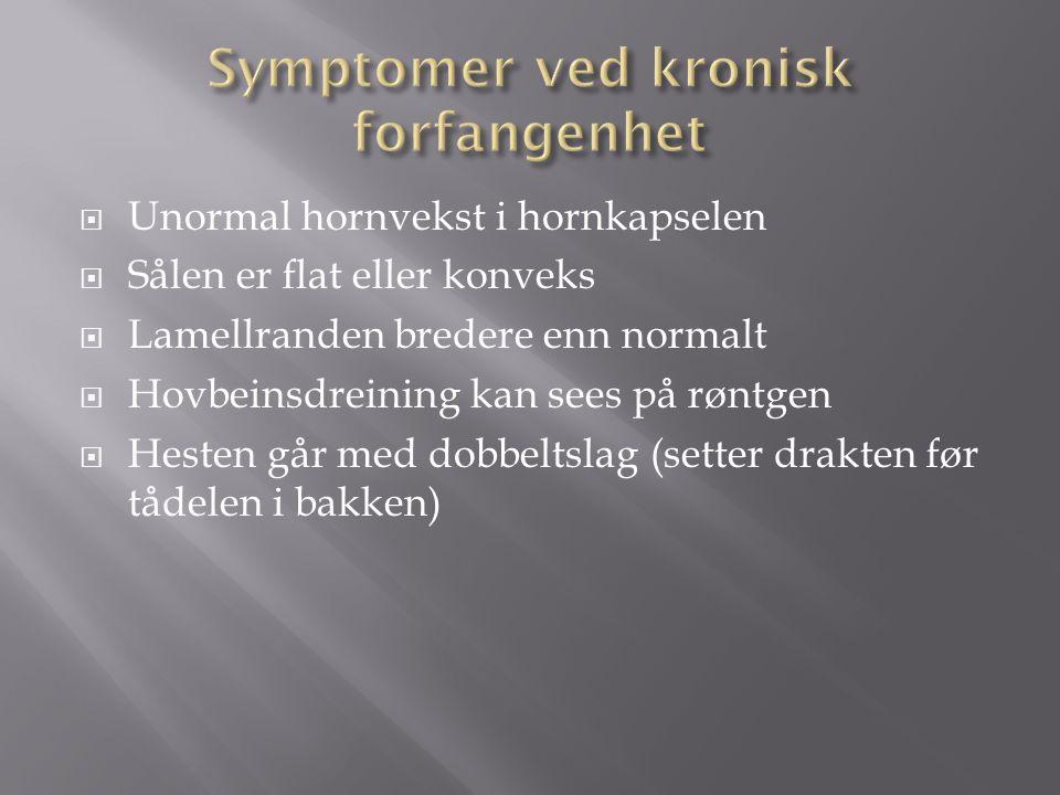 Symptomer ved kronisk forfangenhet