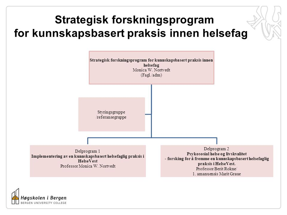 Strategisk forskningsprogram