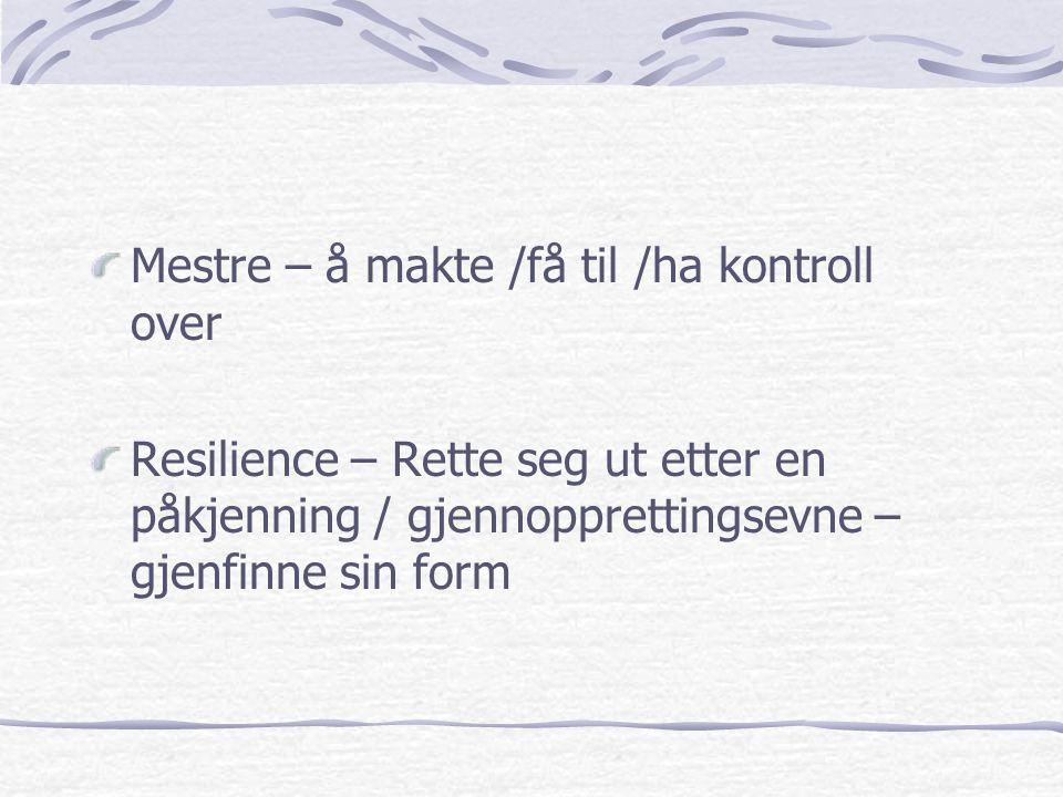 Mestre – å makte /få til /ha kontroll over