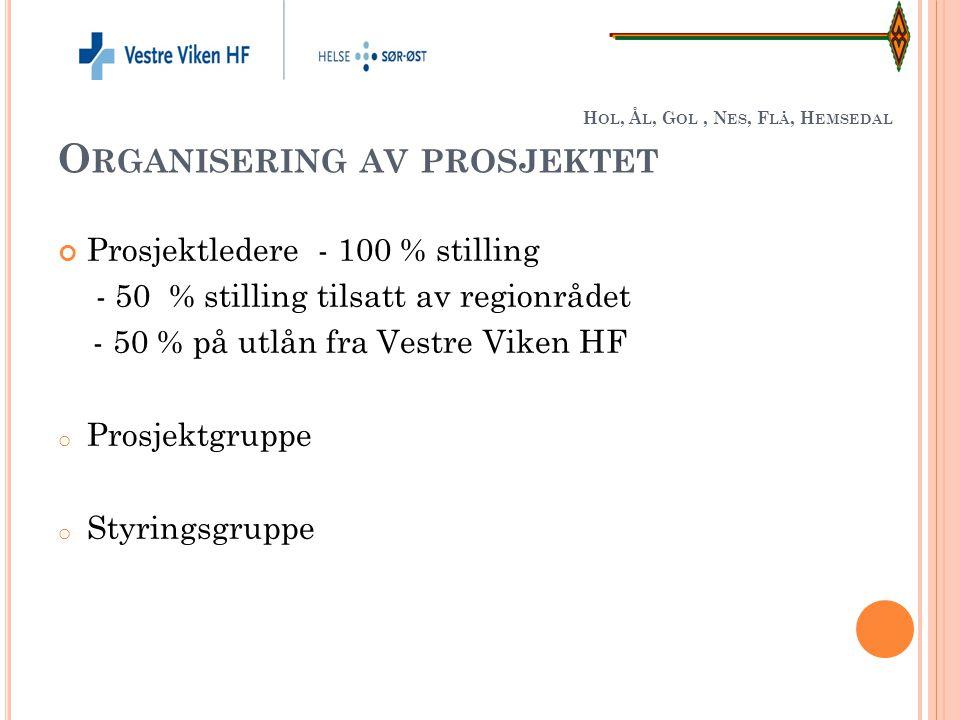 Hol, Ål, Gol , Nes, Flå, Hemsedal Organisering av prosjektet