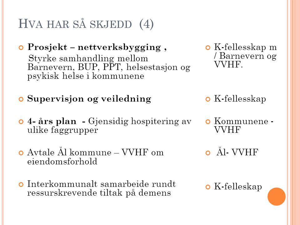 Hva har så skjedd (4) Prosjekt – nettverksbygging ,