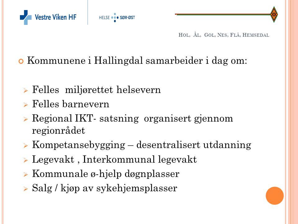 Hol, Ål, Gol, Nes, Flå, Hemsedal