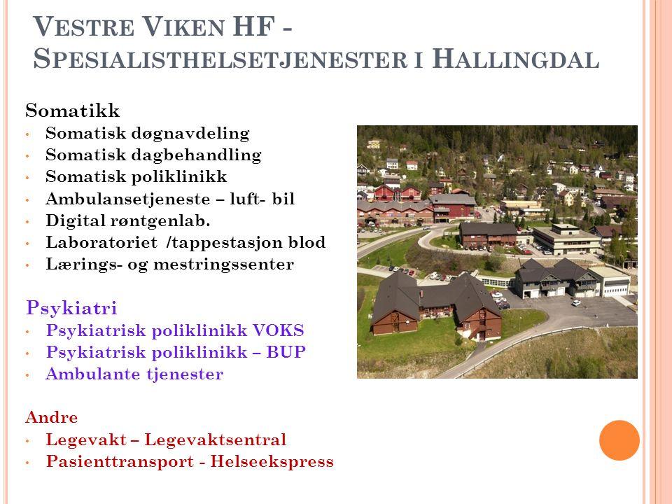 Vestre Viken HF - Spesialisthelsetjenester i Hallingdal