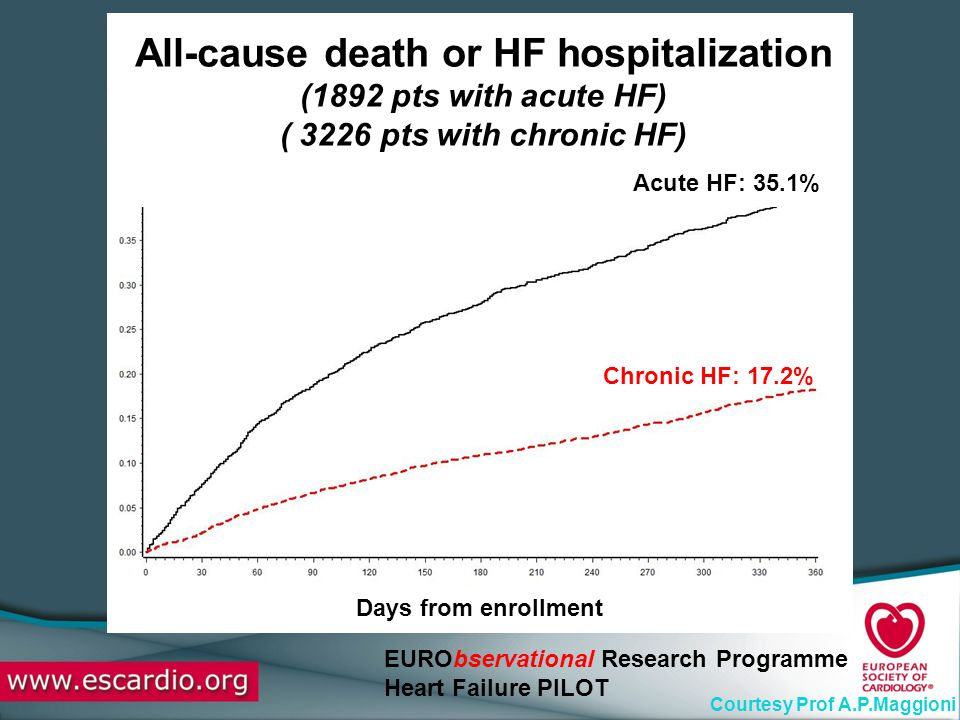 All-cause death or HF hospitalization