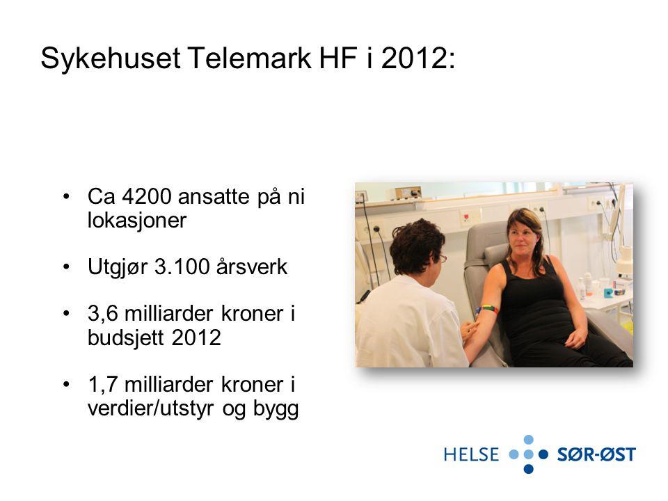 Sykehuset Telemark HF i 2012: