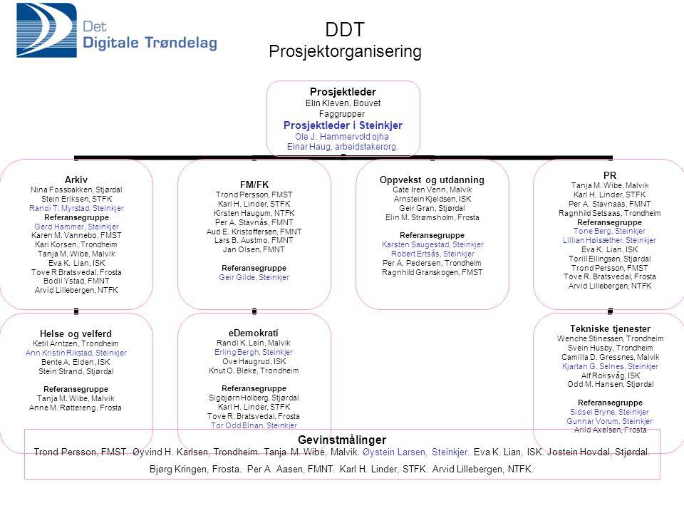 DDT Prosjektorganisering