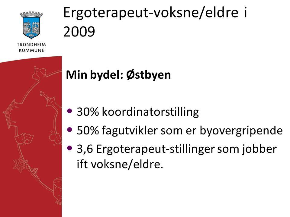 Ergoterapeut-voksne/eldre i 2009