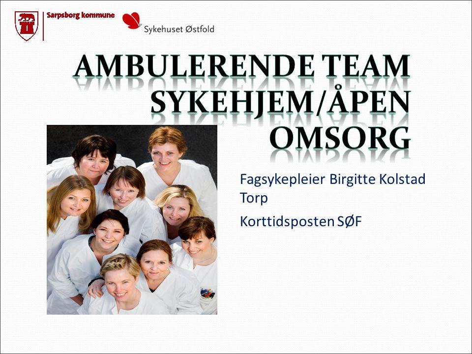 Ambulerende team sykehjem/ÅPEN OMSORG