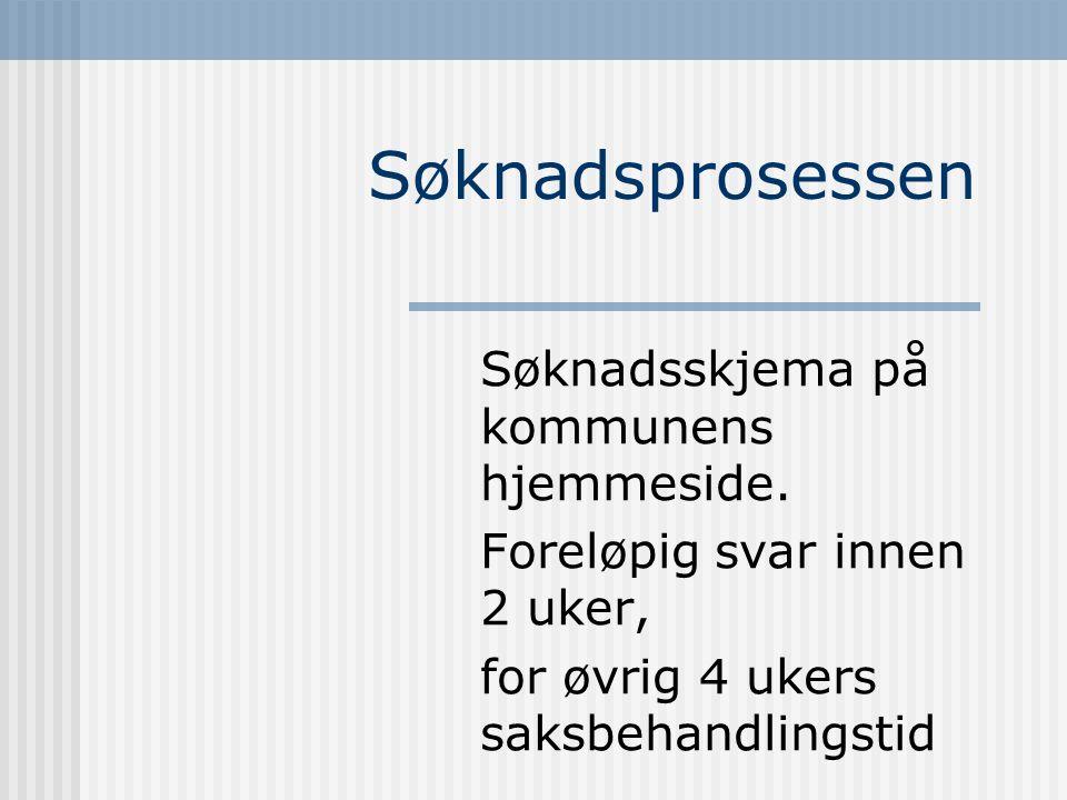 Søknadsprosessen Søknadsskjema på kommunens hjemmeside.
