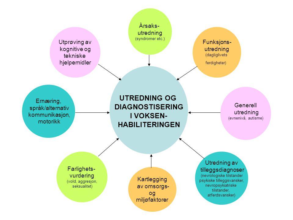 UTREDNING OG DIAGNOSTISERING I VOKSEN- HABILITERINGEN