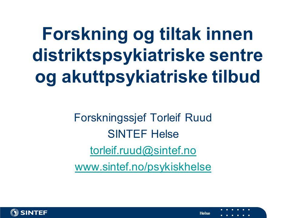 Forskningssjef Torleif Ruud