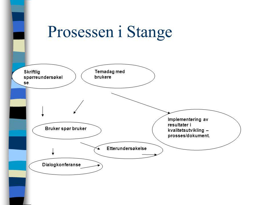 Prosessen i Stange Skriftlig spørreundersøkelse. Temadag med brukere