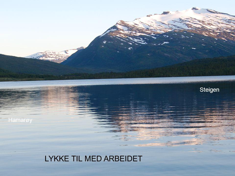 Steigen Hamarøy LYKKE TIL MED ARBEIDET Hygienesykepleier Liv Torvik