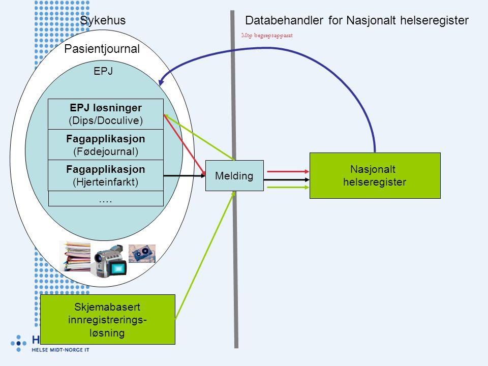 Databehandler for Nasjonalt helseregister