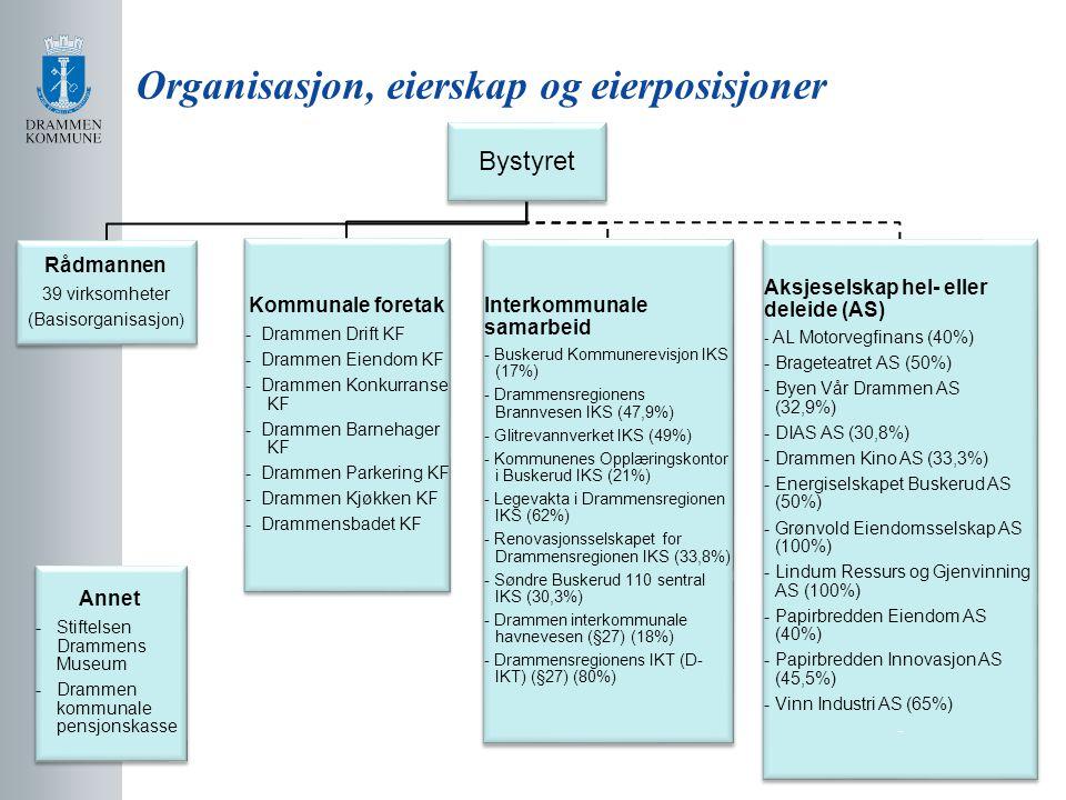 Organisasjon, eierskap og eierposisjoner