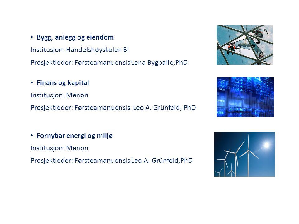 Bygg, anlegg og eiendom Institusjon: Handelshøyskolen BI. Prosjektleder: Førsteamanuensis Lena Bygballe,PhD.