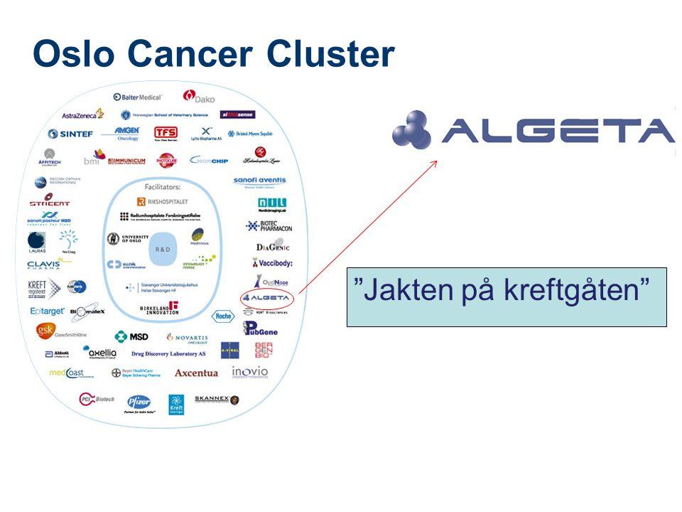 Oslo Cancer Cluster Jakten på kreftgåten