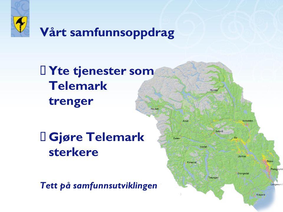 Yte tjenester som Telemark trenger