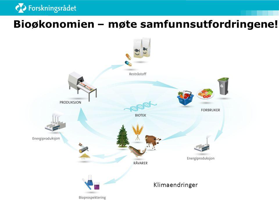 Bioøkonomien – møte samfunnsutfordringene!