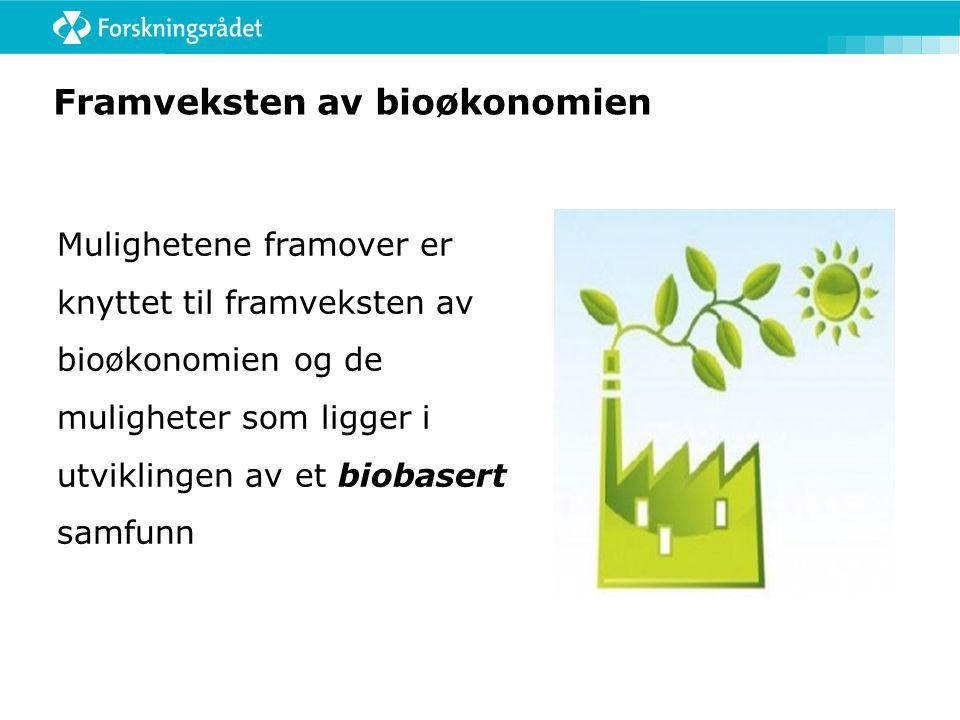 Framveksten av bioøkonomien