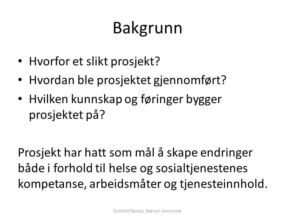 Gunhild Nesset, Bærum kommune