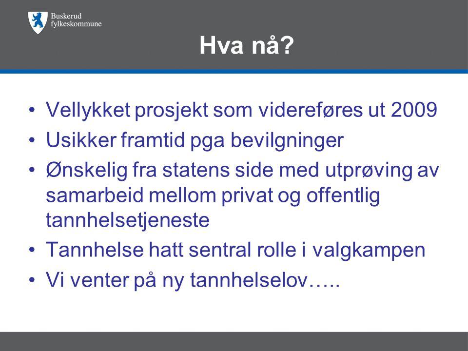 Hva nå Vellykket prosjekt som videreføres ut 2009