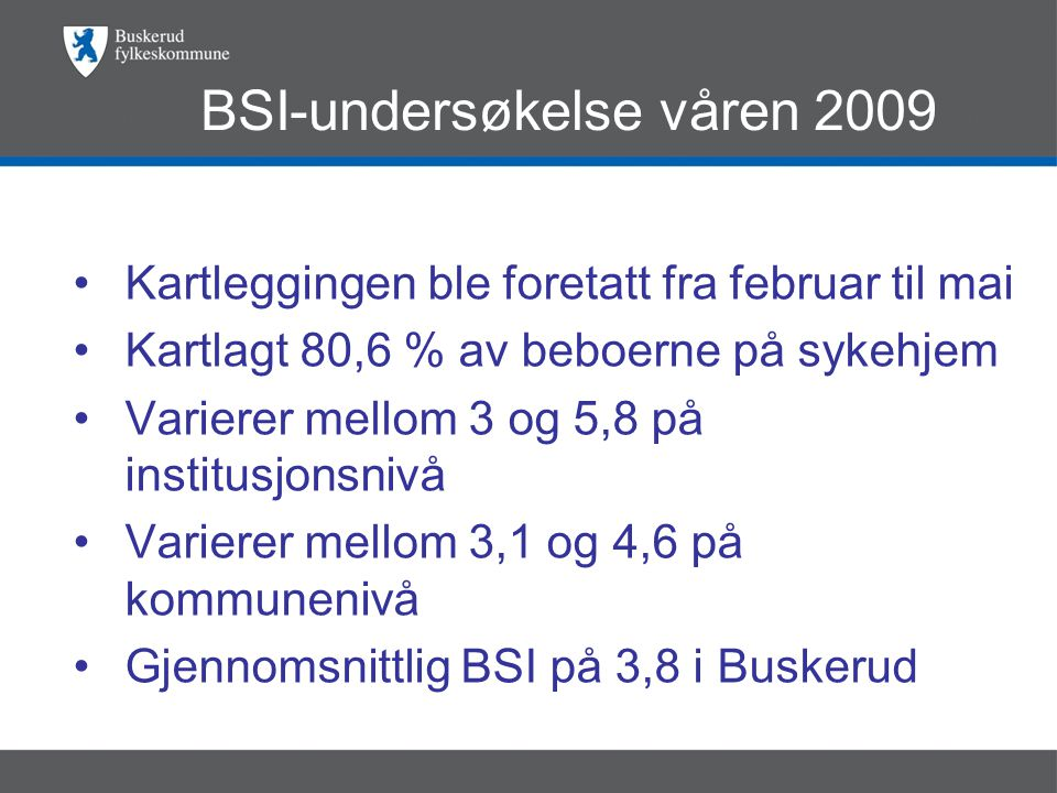 BSI-undersøkelse våren 2009