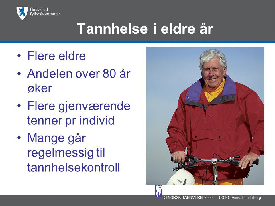 Tannhelse i eldre år Flere eldre Andelen over 80 år øker