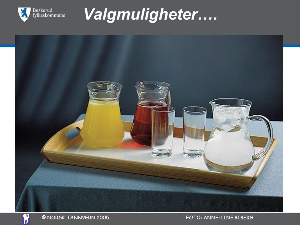 Valgmuligheter…. © NORSK TANNVERN 2005 FOTO: ANNE-LINE BIBERG