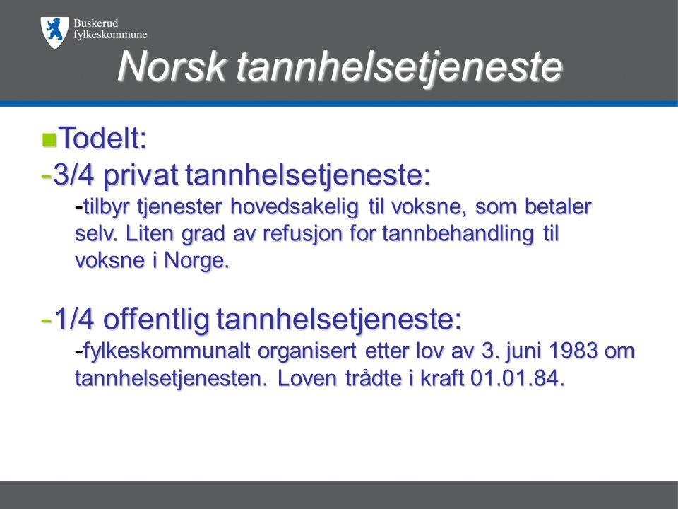Norsk tannhelsetjeneste