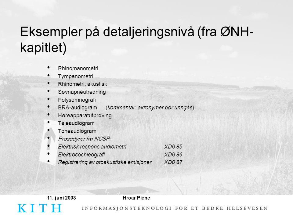 Eksempler på detaljeringsnivå (fra ØNH-kapitlet)