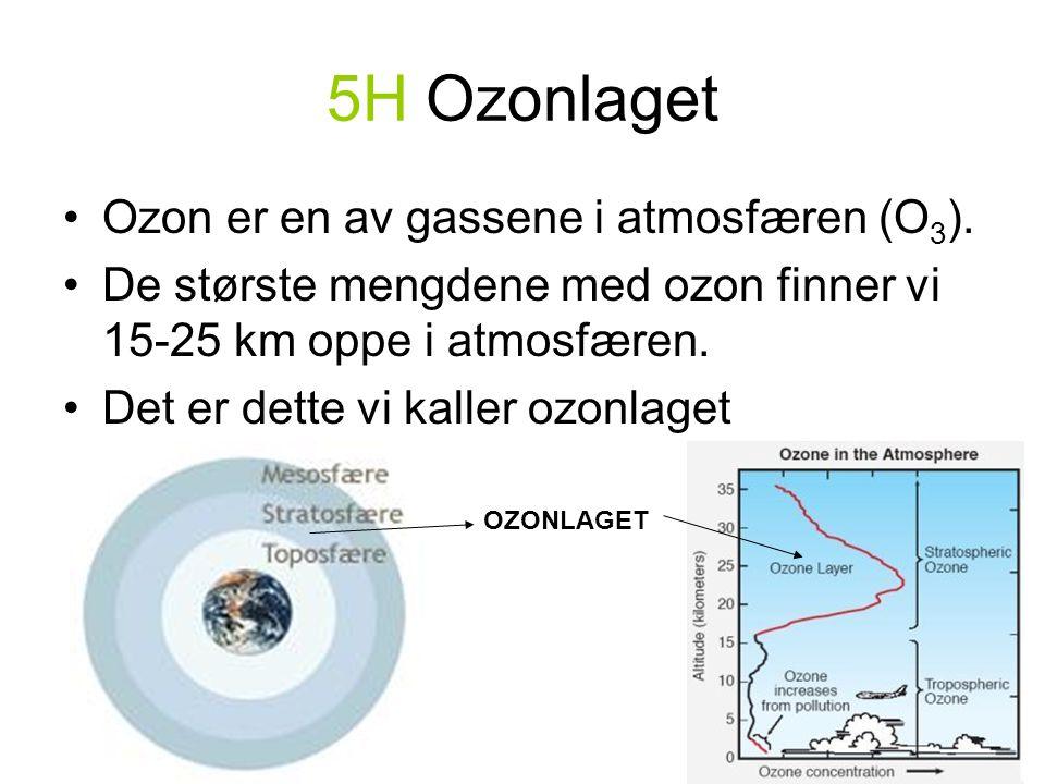 5H Ozonlaget Ozon er en av gassene i atmosfæren (O3).