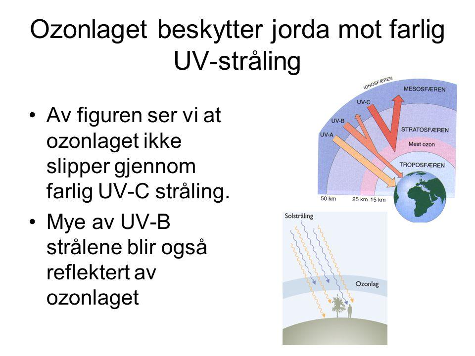 Ozonlaget beskytter jorda mot farlig UV-stråling