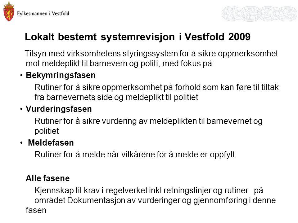 Lokalt bestemt systemrevisjon i Vestfold 2009