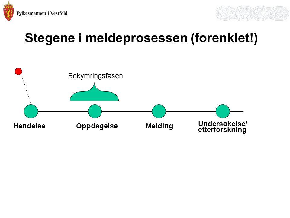 Stegene i meldeprosessen (forenklet!)