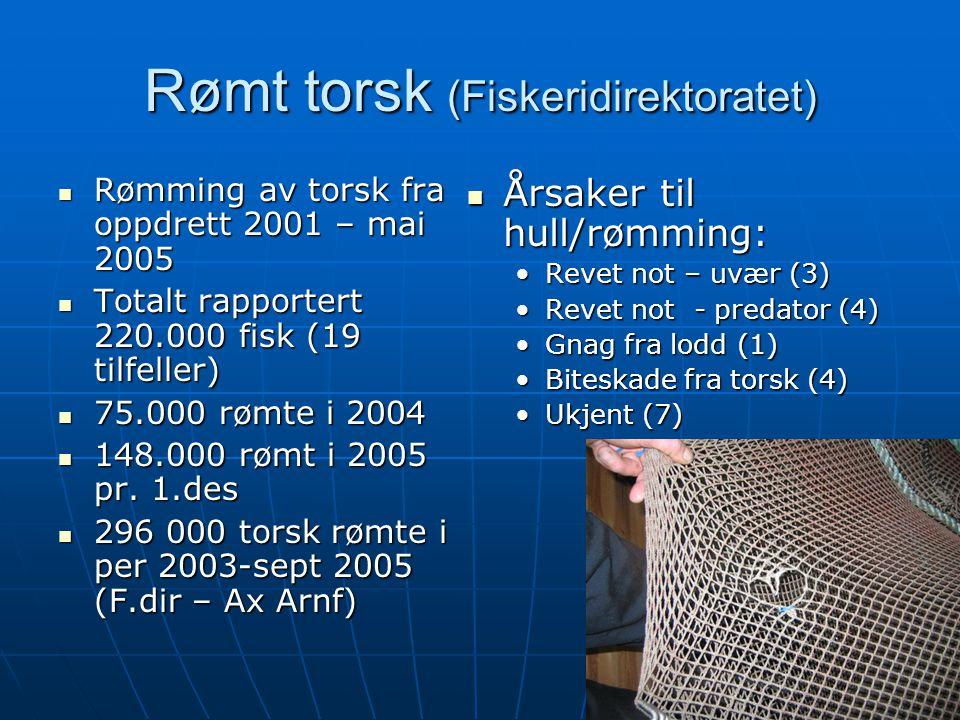 Rømt torsk (Fiskeridirektoratet)