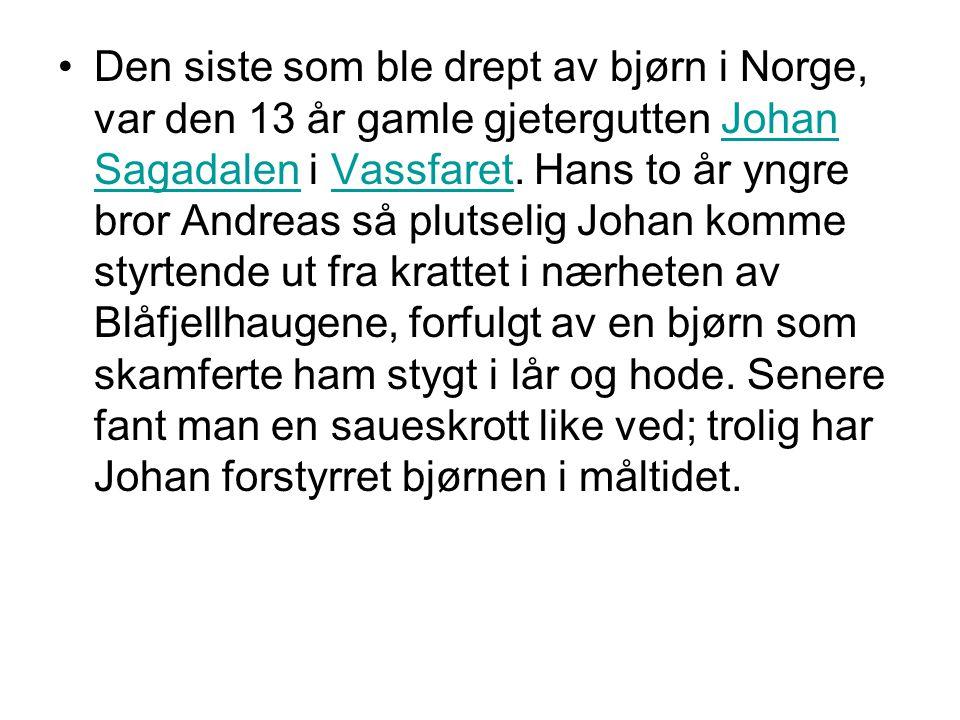 Den siste som ble drept av bjørn i Norge, var den 13 år gamle gjetergutten Johan Sagadalen i Vassfaret.