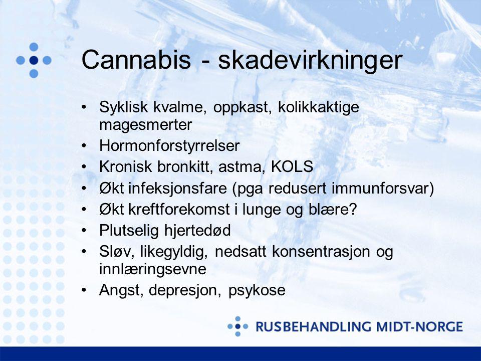 Cannabis - skadevirkninger