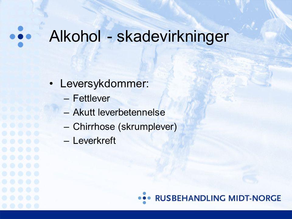 Alkohol - skadevirkninger