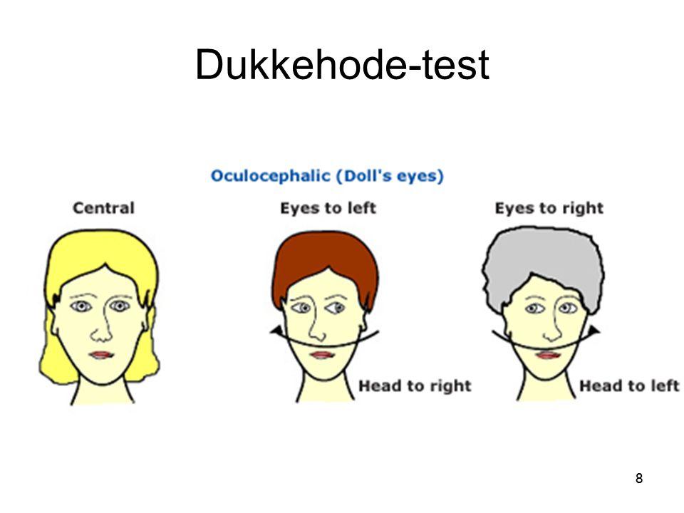 Dukkehode-test 8