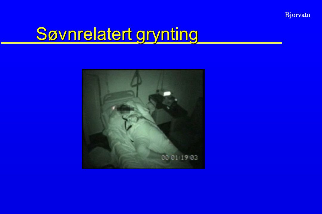 Søvnrelatert grynting