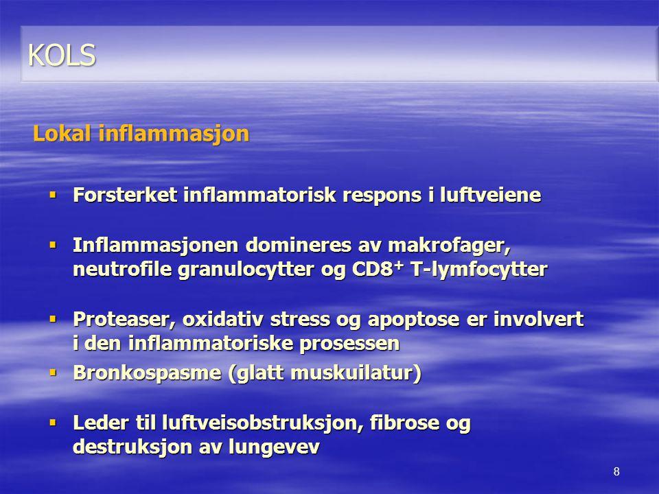 KOLS Lokal inflammasjon Forsterket inflammatorisk respons i luftveiene