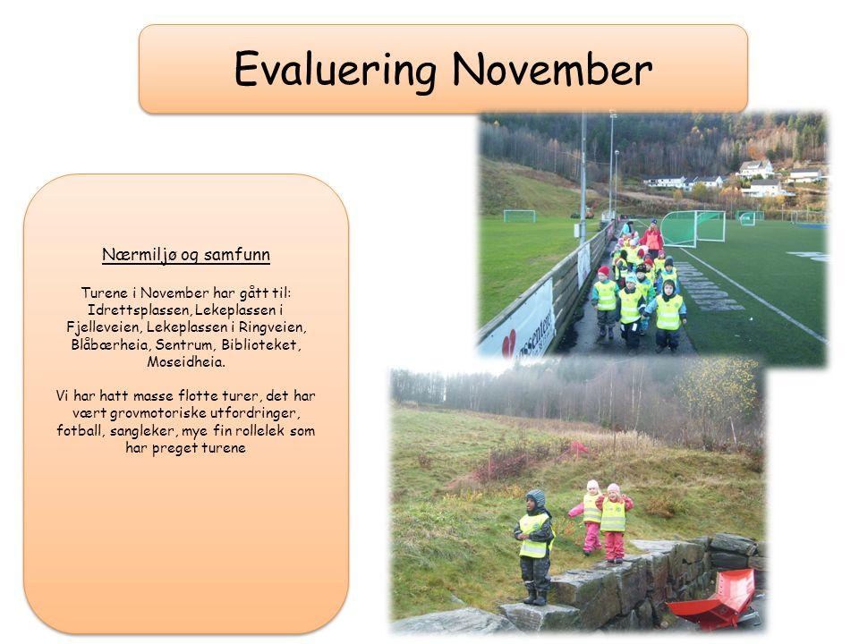 Turene i November har gått til: