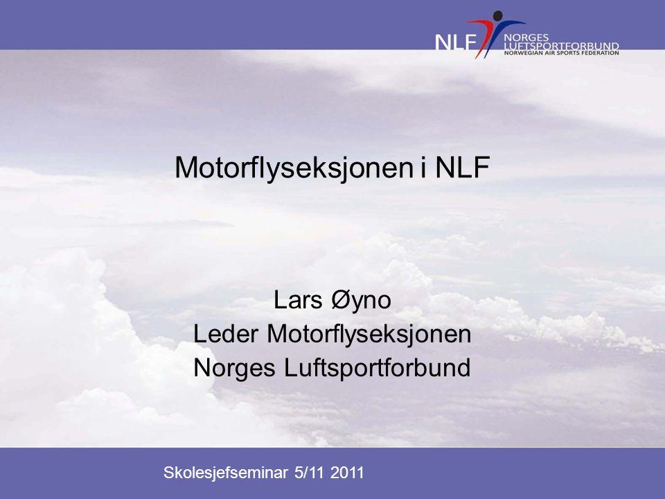 Motorflyseksjonen i NLF