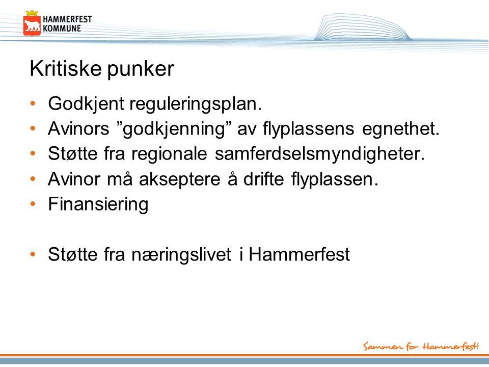 Kritiske punker Godkjent reguleringsplan.